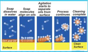 How Soap Works